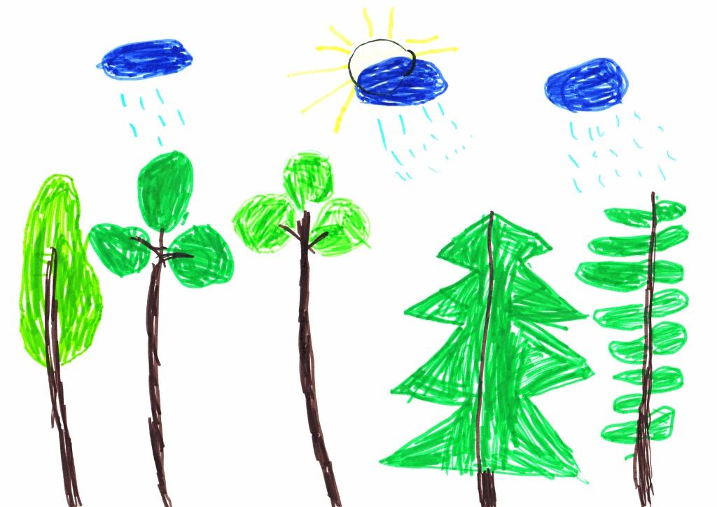 Психологія дитячого малюнку
