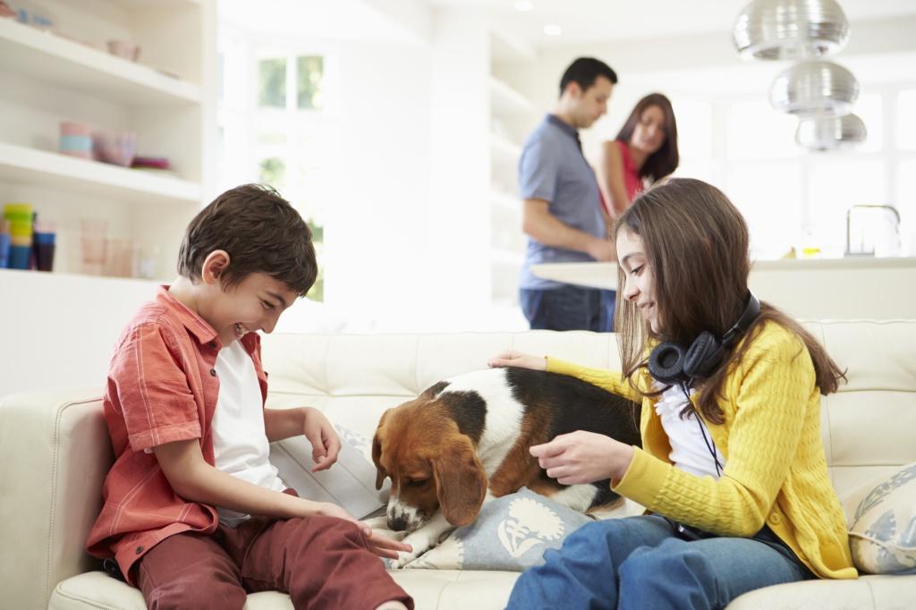Семейные и детские челленджи
