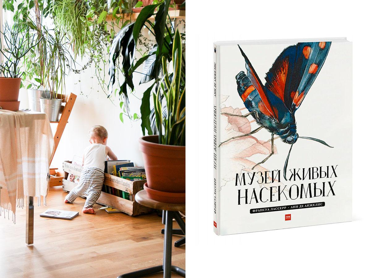 Книги для дітей про комах — вчимося бути уважними до слабших